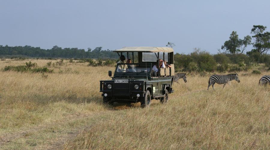 Meridian Wanderlist: African safari