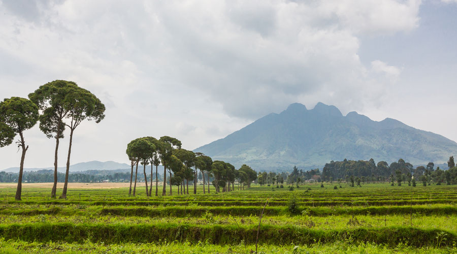 "Meridian | Rwanda is often referred to as the ""land of a thousand hills."""