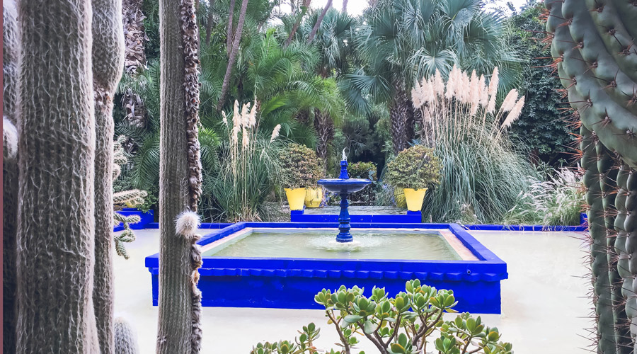 Meridian | The Jardin Marjorelle in Marrakech, Morroco